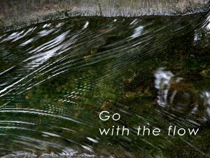 Go with the Flow by Nicole Katano