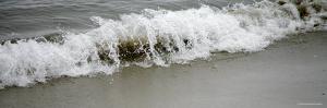 Shore Break II by Nicole Katano
