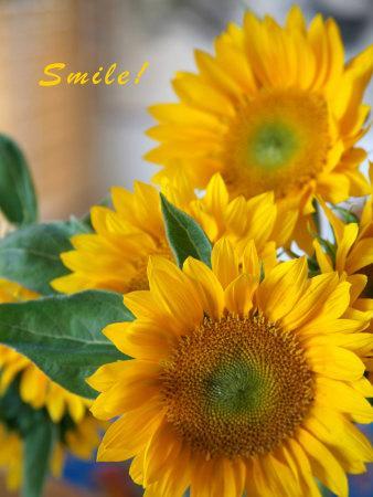 Smile: Sunny Sunflower