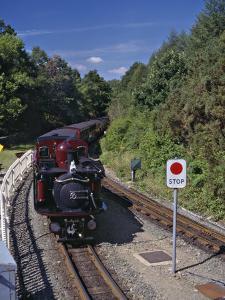 Ffestiniog Railway at Tan-Y-Bwlch, the Busiest of the North Wales Narrow Gauge Railways by Nigel Blythe