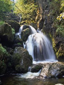 Lordor Cascade, Borrowdale, Lake District, Cumbria, England, United Kingdom, Europe by Nigel Blythe