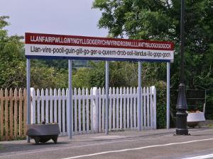 Station Sign at Llanfairpwllgwyngyllgo-Gerychwyrndrobwllllantysiliogogogoch by Nigel Blythe