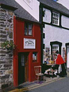 The Smallest House in Britain, on the Quayside at Conwy by Nigel Blythe
