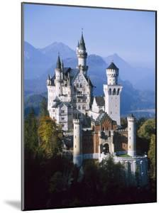 Neuschwanstein Castle, Fussen Bavaria, South Germany by Nigel Francis