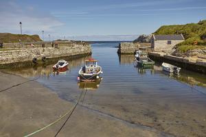 Balintoy harbour, near Giant's Causeway, County Antrim, Ulster, Northern Ireland, United Kingdom, E by Nigel Hicks