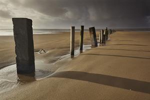 Groyne Posts Seen in Stormy Sunlight on the Beach at Berrow, Somerset by Nigel Hicks