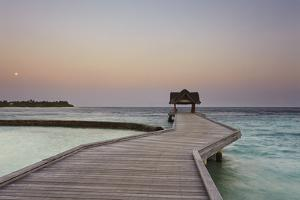 Kuramathi Island, Rasdhoo atoll, Ari atoll, Maldives, Indian Ocean, Asia by Nigel Hicks