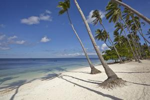 Paliton Beach, near San Juan, Siquijor, Philippines, Southeast Asia, Asia by Nigel Hicks
