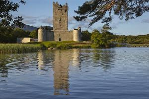 Ross Castle, on the shore of Lough Leane, Killarney National Park, Killarney, County Kerry, Munster by Nigel Hicks
