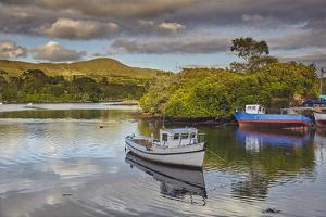 The harbour at Glengarriff, County Cork, Munster, Republic of Ireland, Europe by Nigel Hicks