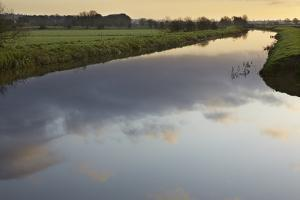 The River Brue Flowing Through Countryside on the Somerset Levels, Near Glastonbury by Nigel Hicks