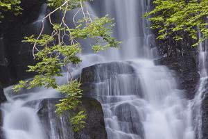 Torc Waterfall, Killarney National Park, near Killarney, County Kerry, Munster, Republic of Ireland by Nigel Hicks