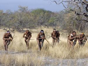 Bushman Hunter-Gatherers Makes Stealthy Approach Towards an Antelope, Bows and Arrows at Ready by Nigel Pavitt