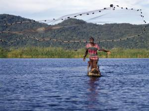 Fisherman in Dugout Canoe Casts Net in Shire River, Lake Malawi's Only Outlet, Southern End of Lake by Nigel Pavitt