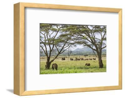 Kenya, Meru County