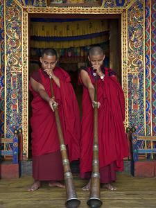 Two Monks Blow Long Horns Called Dung-Chen, at the Temple of Wangdue Phodrang Dzong (Fortress) by Nigel Pavitt