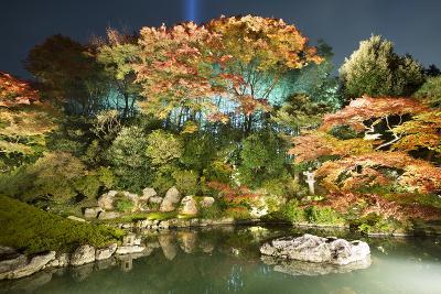 Night Illuminations of Temple Gardens, Shoren-In Temple, Southern Higashiyama, Kyoto, Japan-Stuart Black-Photographic Print