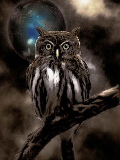 Night Owl--Giclee Print