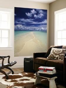 Beach in Palau by Nik Wheeler