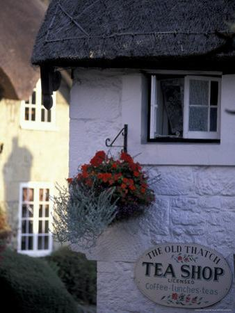 Cottages in Old Shanklin, Isle of Wight, England