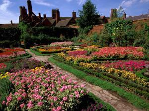 Elizabethan Knot Garden, Shakespeare's Home, Stratford-on-Avon, England by Nik Wheeler