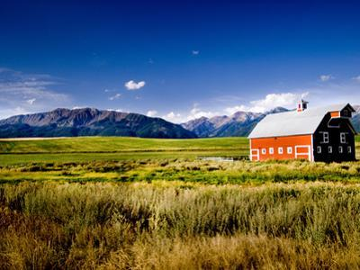 Red Barn in Field Near Joseph, Wallowa County, Oregon, USA