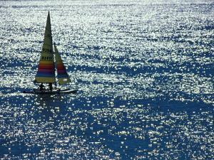 Sailing Couple, Florida, USA by Nik Wheeler