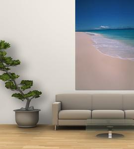 Scenic Tropical Beach, Seychelles by Nik Wheeler