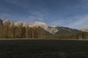 Autumnal Panorama with Burning Larches by Niki Haselwanter