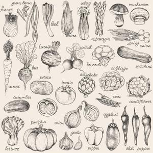Hand-Drawn Vegetables by Nikiparonak