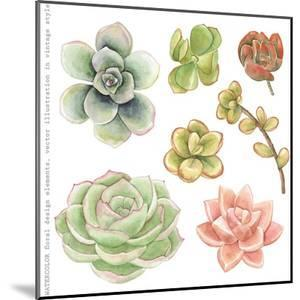 Watercolor Collection of Succulents for Your Design, Hand-Drawn Illustration. by Nikiparonak