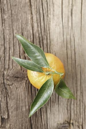 Clementine with Leaves on Wood