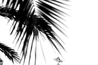 Palm Leaves, Cross, B/W