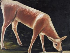 Roe Deer Drinking by Niko Pirosmani