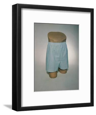 Best Selling Christmas Gifts - Boxers on Model Bust