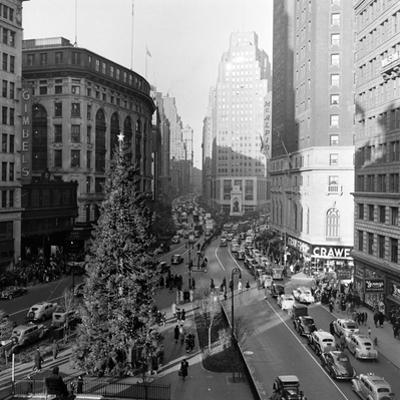 Christmas Tree on 52nd Street Next to Gimbels Department Store, New York, NY, 1940S by Nina Leen