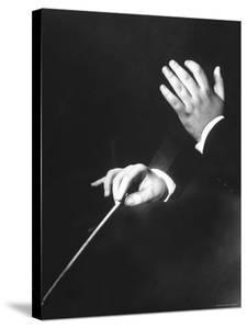 Close Up of Hands of Young Conductor Lorin Maazel by Nina Leen