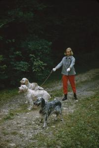 Model in Tom Brigance-Designed Outfit, Walks a Trio of Dogs Along a Path, New York, New York, 1954 by Nina Leen