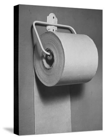 Roll of Toilet Paper, Illustrating the Shortage