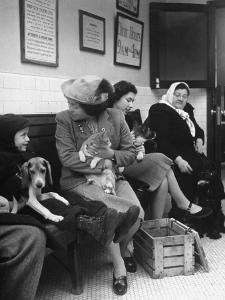 Women and Children Holding Pets While Waiting to See Veterinarian by Nina Leen