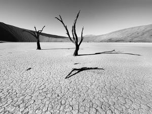 Namibia Dead Vlei by Nina Papiorek