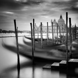 Venice Santa Maria della Salute by Nina Papiorek