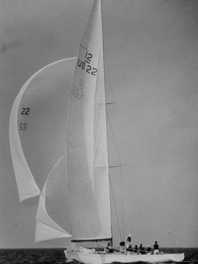 Nine Individuals Are Seen Sailing on Three Sail Intrepid Sailboat During the America's Cup Trials-George Silk-Photographic Print