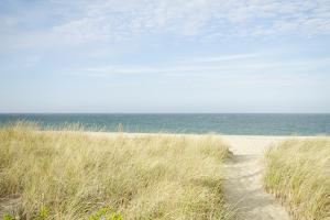 Beach Path, Nantucket by Nine OK