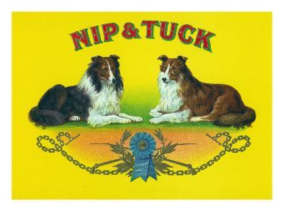 Nip and Tuck Brand Cigar Box Label, Rough Collies-Lantern Press-Art Print