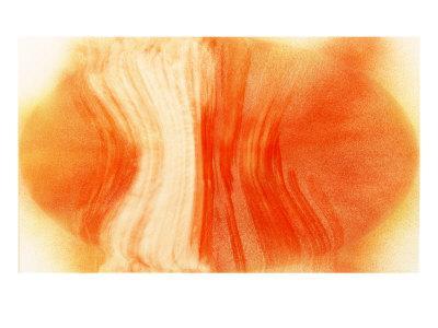 https://imgc.artprintimages.com/img/print/nirvana-exploding-mandarin-orange_u-l-p8m3xt0.jpg?artPerspective=n