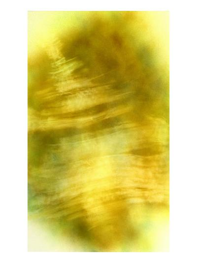 Nirvana: The Dandelion Felt the Existence of the Wind-Masaho Miyashima-Giclee Print