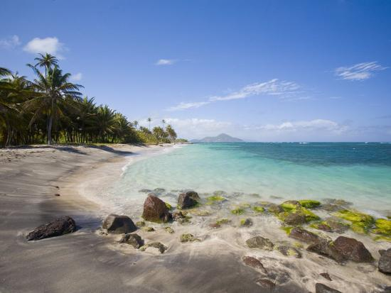 Nisbett Plantation Beach, Nevis, Caribbean-Greg Johnston-Photographic Print