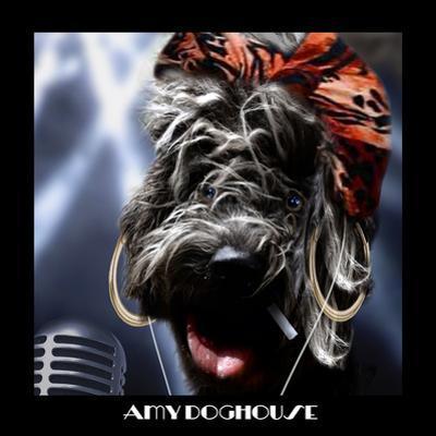 Amy Doghouse (Ipod) by Noah Bay