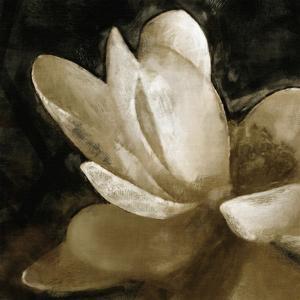 Bronze Lily V by Noah Bay